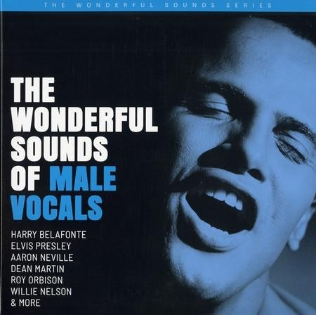 Various Artists - The Wonderful Sounds Of Male Vocals