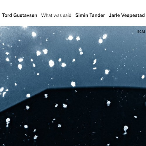Tord Gustavsen/Simin Tander/Jarle Vespestad - What Was Said